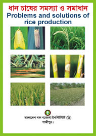 Problems and solutions of rice production