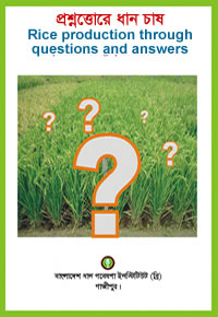Questions and answers in rice production