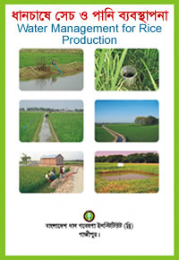 Water management for rice production